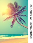 Tropical Beach With Palm In Sri ...
