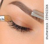 Постер, плакат: Make up Eyebrow Makeup Eyes