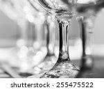 horizontal photo of aligned... | Shutterstock . vector #255475522
