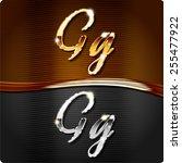 golden stylish italic letters... | Shutterstock .eps vector #255477922