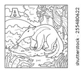 coloring book  anteater  ... | Shutterstock .eps vector #255480622