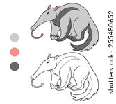coloring book  anteater  | Shutterstock .eps vector #255480652