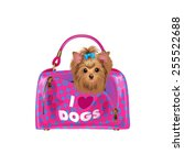 cute puppy in bag. isolated... | Shutterstock .eps vector #255522688