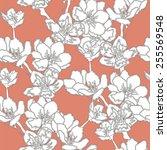 apple tree branch. seamless... | Shutterstock .eps vector #255569548