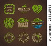 organic food labels and... | Shutterstock .eps vector #255615955