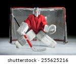 a young ice hockey goaltender... | Shutterstock . vector #255625216