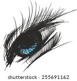 eye | Shutterstock .eps vector #255691162