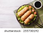 fried spring rolls on a plate... | Shutterstock . vector #255730192