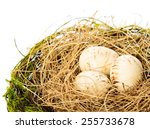 Nest With Eggs On A White...