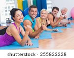 portrait of happy people... | Shutterstock . vector #255823228