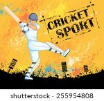 player playing game of cricket... | Shutterstock .eps vector #255954808