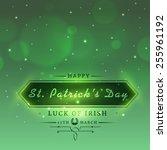 elegant greeting card design... | Shutterstock .eps vector #255961192