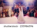 first dance bride in a... | Shutterstock . vector #255986596