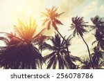 tropical beach background with... | Shutterstock . vector #256078786