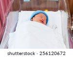 newborn baby sleeping in the... | Shutterstock . vector #256120672