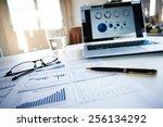 report the business profitable... | Shutterstock . vector #256134292
