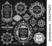 vector vintage collection ... | Shutterstock .eps vector #256254652
