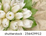 close up of white tulip bouquet ... | Shutterstock . vector #256429912