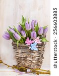 lilac bunch of tulips on wooden ... | Shutterstock . vector #256603885