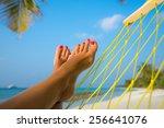 Woman Feet In Hammock On The...