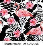 silhouette tropic exotic...   Shutterstock .eps vector #256649056