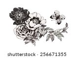 hand drawn garden flowers with... | Shutterstock . vector #256671355