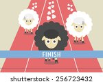Competition Of Sheep. The Most...
