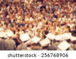 audience in a big concert hall... | Shutterstock . vector #256768906