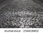 grey cobblestone road in the... | Shutterstock . vector #256818802