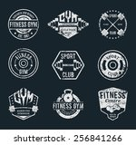 set of vector grungy gym and... | Shutterstock .eps vector #256841266