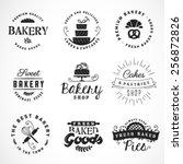 typographical bakery  desserts... | Shutterstock .eps vector #256872826