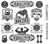 set of monochrome fitness... | Shutterstock . vector #256885726