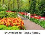 Walkway Through Spring Flowers...