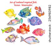 set of tropical fishes. vector | Shutterstock .eps vector #256983982