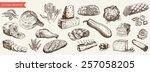 foodstuffs set of hand drawn... | Shutterstock .eps vector #257058205