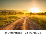 The Summer Rural Landscape Wit...