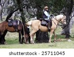 female rider and horse in the... | Shutterstock . vector #25711045