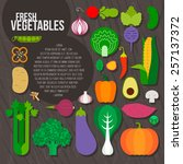 fresh vegetables vector concept.... | Shutterstock .eps vector #257137372