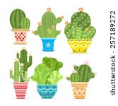 Vector Set Of Cacti. The Cactu...
