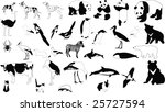 collection of vector... | Shutterstock . vector #25727594