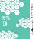 white honey comb pattern over...   Shutterstock .eps vector #257314975
