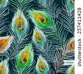 watercolor  pen  peacock pattern | Shutterstock .eps vector #257411428