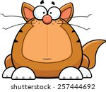 Cartoon illustration of a funny cat with a worried expression.  - stock vector