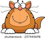 cartoon illustration of a funny ... | Shutterstock .eps vector #257444698