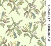 pant pattern. vector   Shutterstock .eps vector #257454346