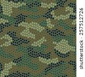 seamless camouflage pattern... | Shutterstock . vector #257512726