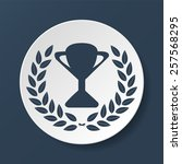 trophy and awards icon on white ...