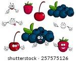 cherry  raspberry  blueberries... | Shutterstock .eps vector #257575126
