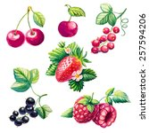 set of berries. raspberries ... | Shutterstock .eps vector #257594206