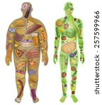 Human  Thin  Fat. Nutrition ...